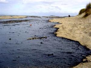 Los problemas de la contaminación ambiental y humana